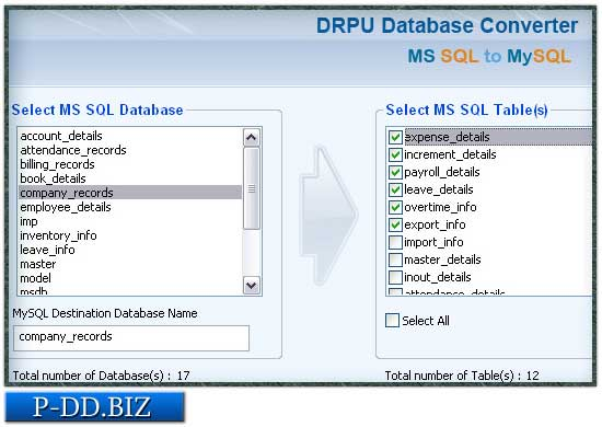 Microsoft SQL Database Migration Program